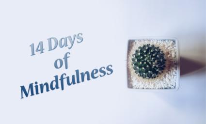 14 days of mindfulness challenge