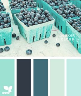 colour palette: basket blues