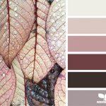 colour palette - dew