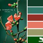 Colour Palette - Branching Colour