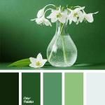 Colour Palette - White Narcissus