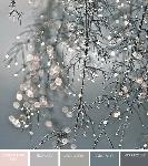Winter Greys colour palette