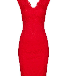 Petite Red Scallop Lace Dress