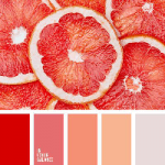 Colour Palette - Red Oranges