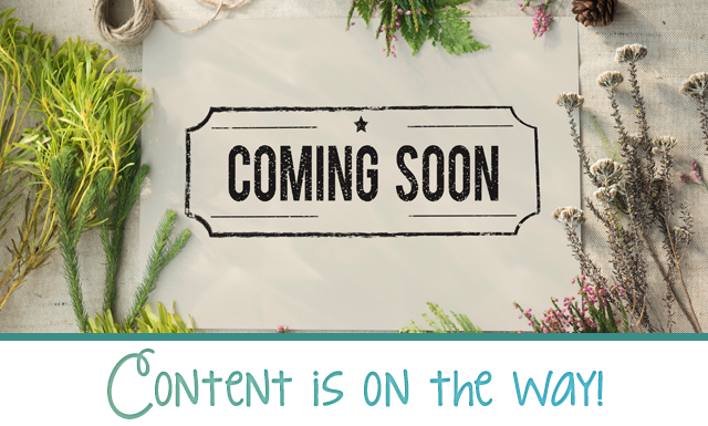This content is coming soon!