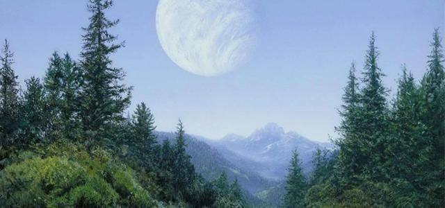 Star Wars Challenge: Planets - Endor