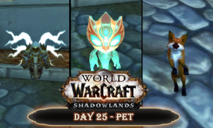 Countdown to Shadowlands Day 24 - Three World of Warcraft Pets that mean something special to me